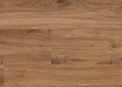 Europen oak